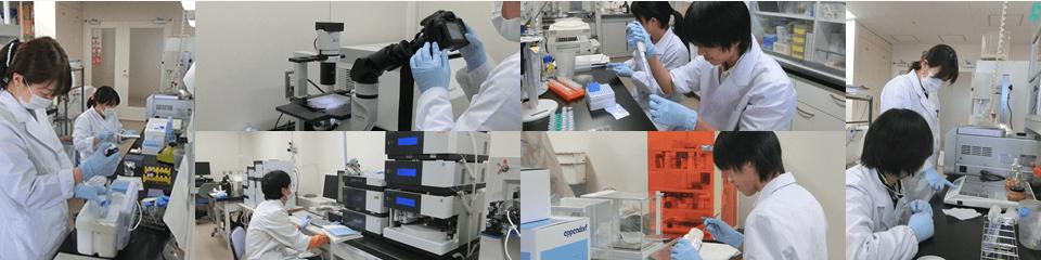 帝京大学薬学部 臨床分析学研究室